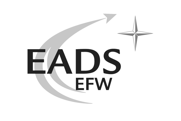 Interim Manager bei EADS